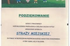Skan_20200716-73